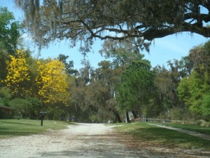 5K Race Route Through Windermere, FL