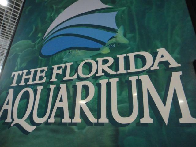 Tampa, Florida - School Field Trip